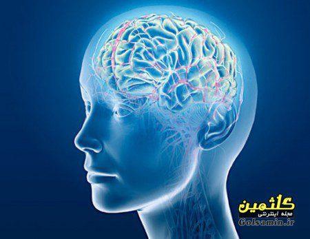 ۱۰ عامل که باعث نابودی مغز می شوند, چگونه مغز از کار می افتد