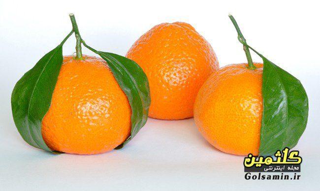 خواص نارنگی, Tangerine properties