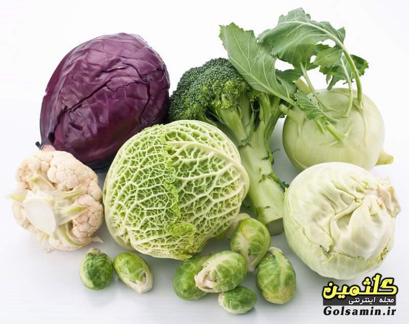 خواص انواع کلم, Cabbage properties