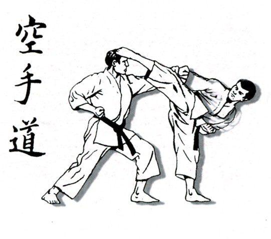 تاریخچه کاراته, کاراته ایران