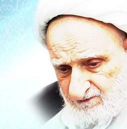 زندگینامه آیت الله العظمی محمد تقی بهجت, بزرگان معاصر