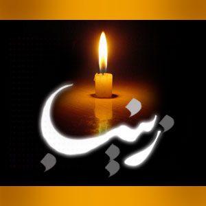 زندگینامه و سیره حضرت زینب سلام الله علیها, شخصیتهای مذهبی