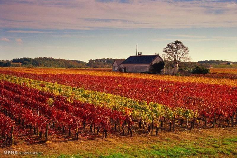 تصاویر رنگ آمیزی زیبای طبیعت در فصل پاییز, طبیعت