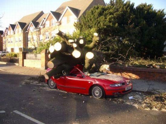 جالب ترین صحنه های تصادف در جهان
