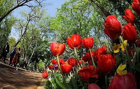 باغ ایرانی یکی از مکان های گردشگری تهران, توریسم, گردش, گردشگری, مسافرت, مکان های توریستی, مکان های گردشگری