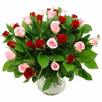 آموزش نگهداری گل,نحوه نگهداری طولانی مدت گل