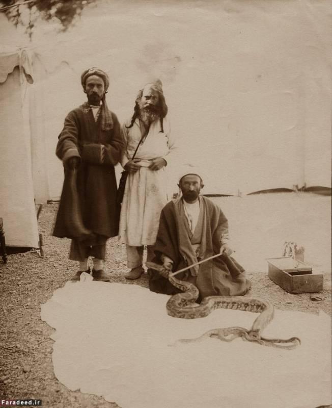 سه درویش قاجاری و مار عظیم الجثه, تصویر