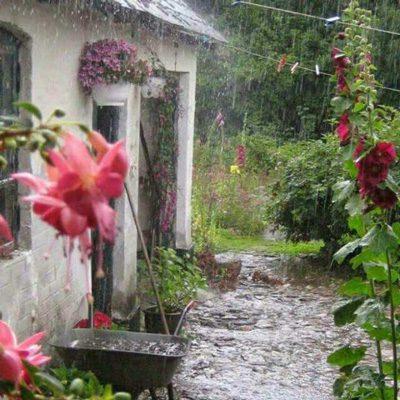 باز باران با ترانه (گلچین گیلانی), شعر