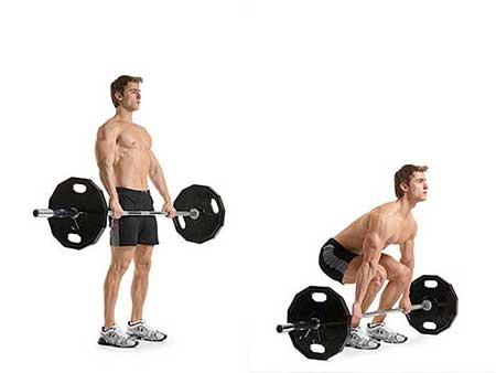 6 ورزش مناسب برای کاهش وزن, دانستنی های ورزشی