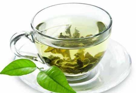 خاصیت گیاه چای سبز
