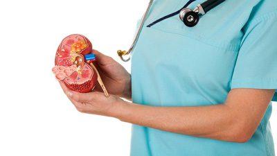 ارتقا سلامت کلیه با این مواد غذایی, تغذیه, رژیم