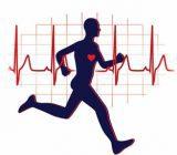احادیث ائمه اطهار در مورد ورزش کردن