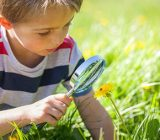روشهایی برای تقویت حس کنجکاوی در کودکان