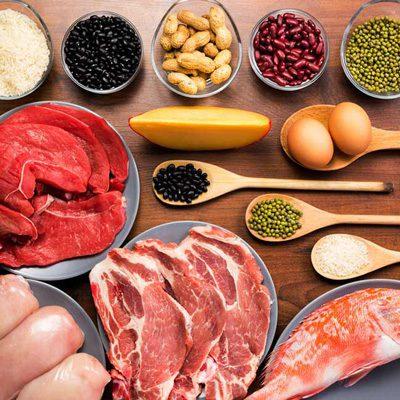فواید رژیمهای غذایی با محتوای بالای پروتئین, رژیم