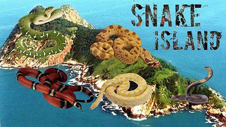 جزیره مارها,تصاویر جزیره مارها,جزیره مارها کجاست