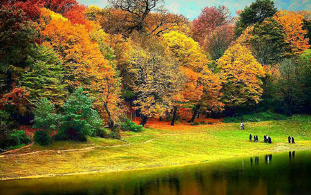 جنگل ناهار خوران,پارک جنگلی ناهار خوران,دیدنی های گرگان