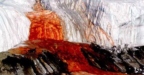 آبشار خون قطب جنوب,آبشار خون،عجایب طبیعت