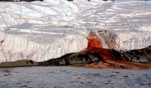 آبشارهای خون قطب جنوب,یخچال های طبیعی،عجایب طبیعی