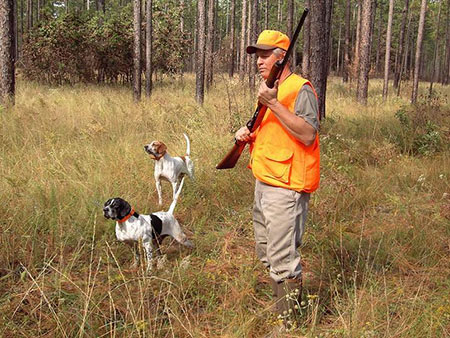 احکام شکار با سگ شکاری,حکم شکار با سگ شکاری,احکام شکار توسط سگ