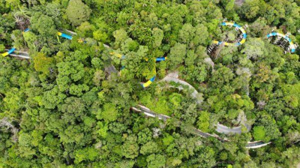 بلندترین سرسره آبی جهان در جنگلهای مالزی, سفر