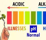 12 غذا که می تواند pH شما را متعادل سازد